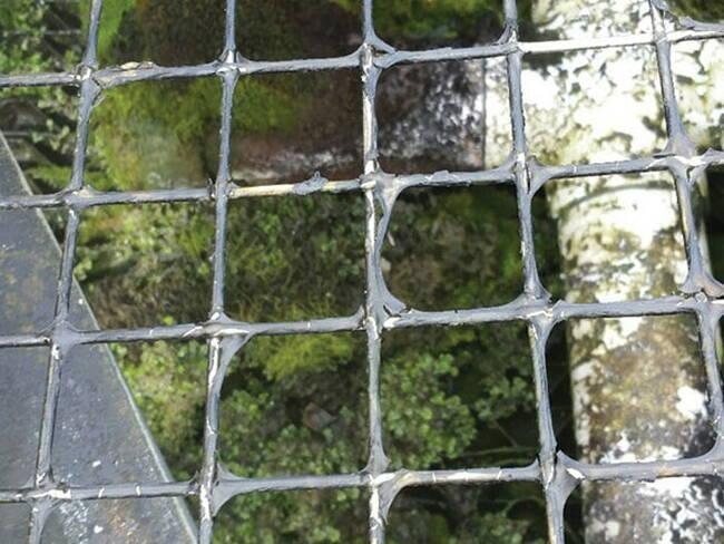 Xử lý rong rêu tháp giải nhiệt đem lại hiệu suất hoạt động cao hơn